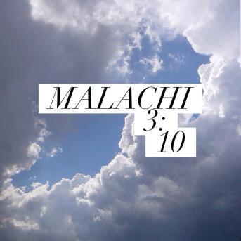 malachi310